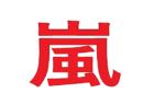 嵐のコンサート 2019名古屋のセトリに座席!レポまとめ!追加グッズ!